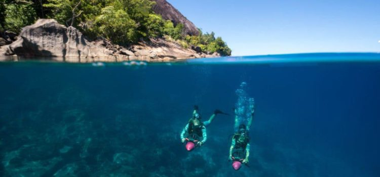 7 Reasons to Visit Heavenly North Island, Seychelles