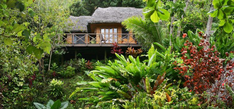 7 Luxury Treehouses Around the World